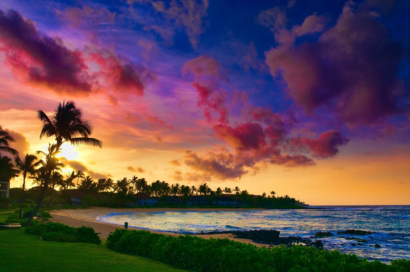 Honeymoon in Hawaii