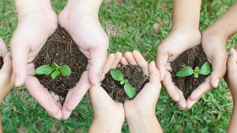 How to Convince Others to Care for the Environment